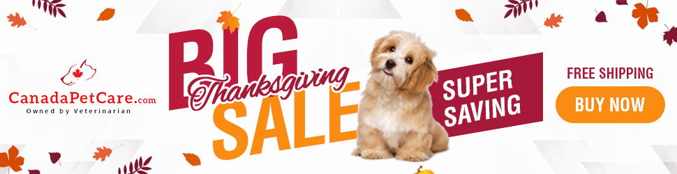 Thanks Giving Sale