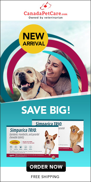 Get your furry pal complete coverage & 100% satisfaction guaranteed with Simparica TRIO! Get 12%   Extra Discount & Free Shipping. Use Code: SPTRIO12