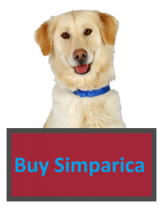 Buy Simparica For Dogs