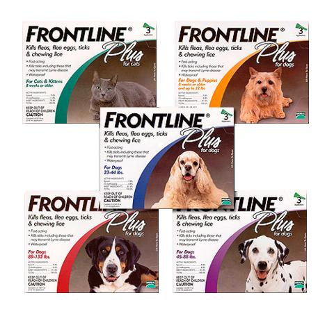 Frontline Plus for Dogs & Cats