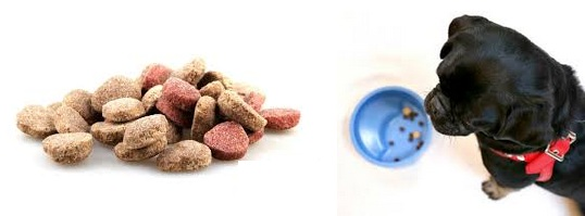 Dental Food And Treats for Dogs
