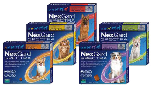 Nexgard Spectra Tab for Dogs - Canada Pet Care Blog