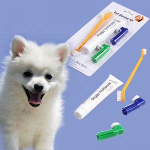 Pet Toothpaste Set for Dog and Cat