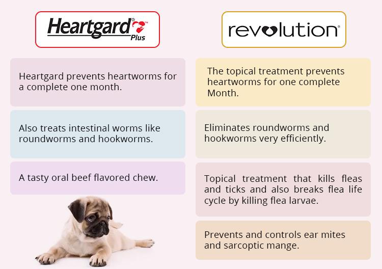 heartgard plus chewables vs revolution