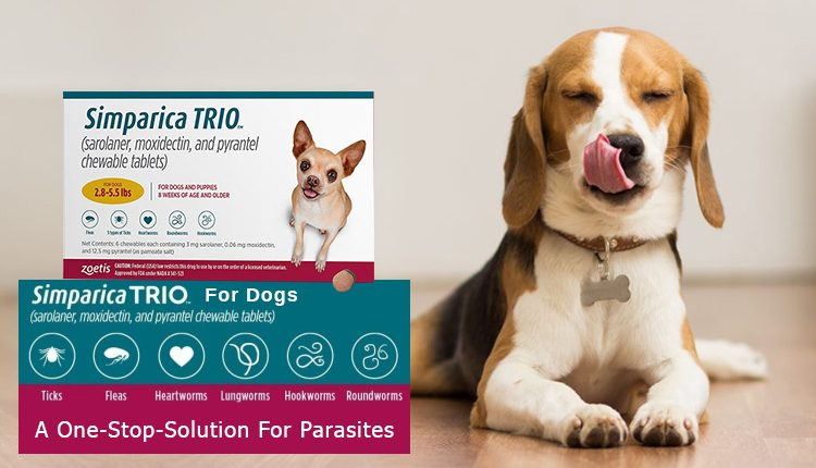 Simaprica Trio For Dogs - A One-Stop-Solution For Parasites