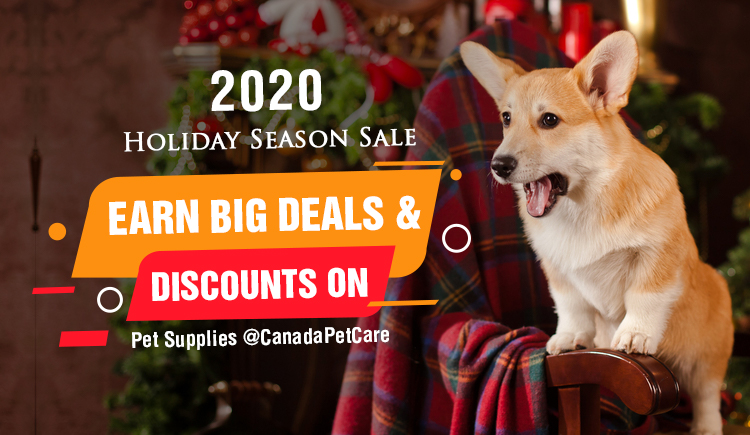 2020 Holiday Season Sale – Earn Big Deals & Discounts on Pet Supplies @CanadaPetCare