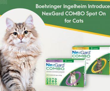 New NexGard COMBO for Cats