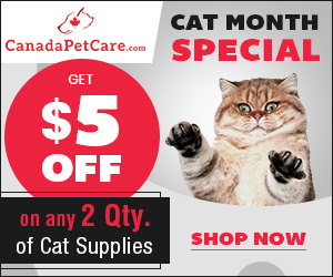 Healthy Cat = Happy Cat! Buy Any 2 Cat Products & Get Instant 12% OFF + Extra $5 Discount.