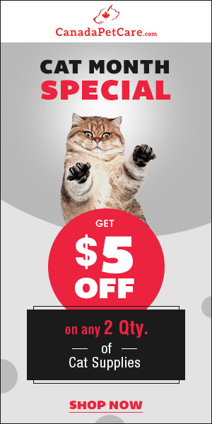 Don't Miss This! Buy Any 2 QTY of Cat Products & Get Extra $5 Discount with 12% Off & Free Shipping.
