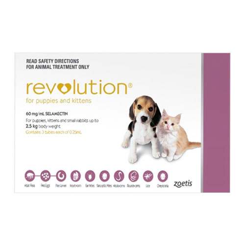 636891626991472038-revolution-for-kittens-puppies-pink