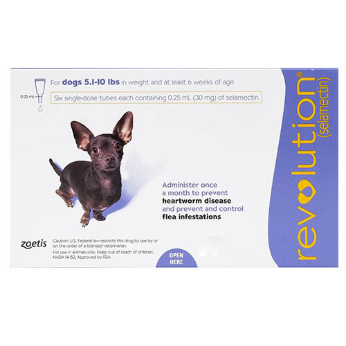 637154248807572127-revolution-for-very-small-dogs-5-1-10-lbs-purple