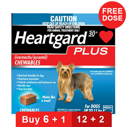 heartgard-plus-chewables-small-dogs-up-to-25lbs-blue-of