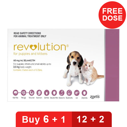 revolution-for-kittens-puppies-pink-of