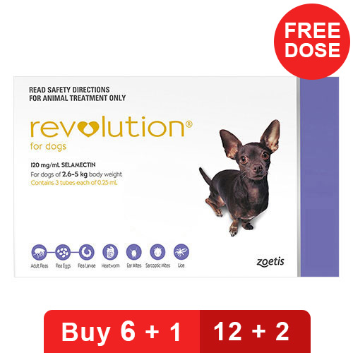 revolution-for-very-small-dogs-5-1-10-lbs-purple-of-of