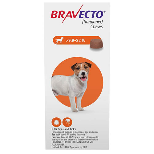 Bravecto for Small Dogs 9.9-22lbs (Orange)
