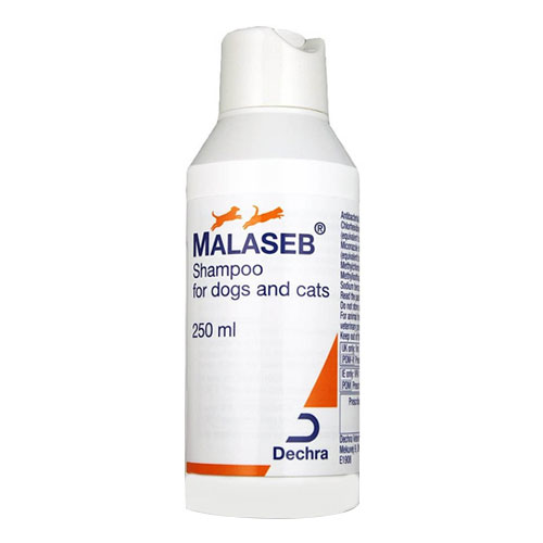 Malaseb Shampoo for Dogs & Cats