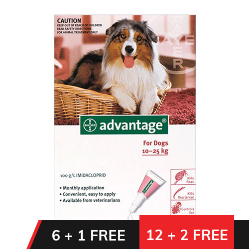 Advantage Large Dogs 21-55lbs (Red)