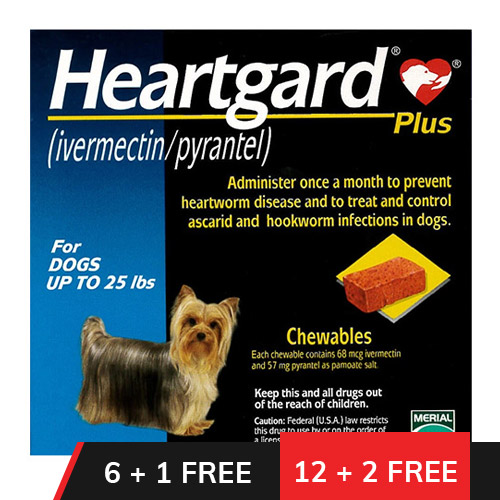 Heartgard Plus Chewables Small Dogs up to 25lbs (Blue)