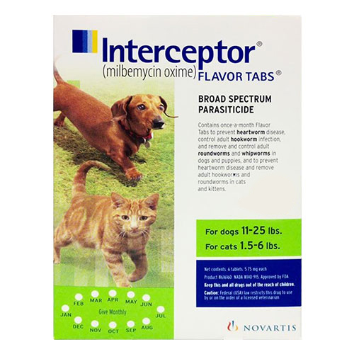 Interceptor For Small Dogs 11-25 lbs (Green)
