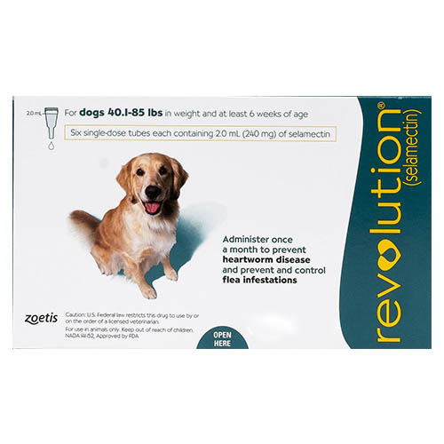 Revolution for Large Dogs 40.1-85lbs (Green)