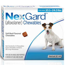 Nexgard For Dogs Buy Nexgard For Dogs Online At Lowest