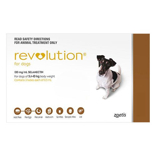 Revolution For Small Dogs 10.1 - 20lbs Brown 3 Doses