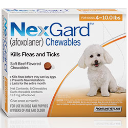 Nexgard tasty chewable kills fleas and protects dogs from harmful flea infestation  Buy branded Nexgard for Dogs for Flea & Tick Control treatment with free shipping to all over USA.