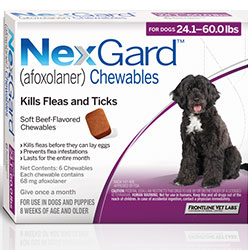Nexgard Chewables for Large Dogs 24