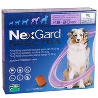 Nexgard-spectra-purple