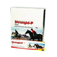 Strongid P Wormer Paste 26 Gm 1 Syringe