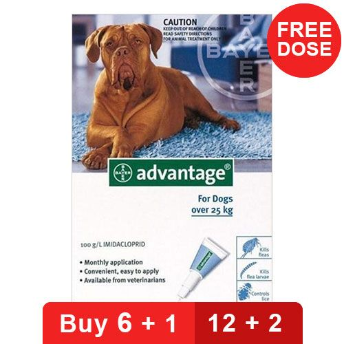 Advantage Extra Large Dogs Over 55 Lbs Blue 4 Doses