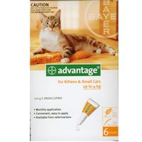 Advantage for Kittens & Small Cats upto 10lbs is a topical anti-flea treatment. The waterproof solution kills 98 - 100 % adult fleas within 12 hours application and reduces the chances of Flea Allergy Dermatitis (FAD).