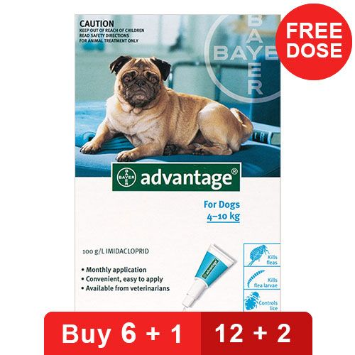 Advantage Medium Dogs 11-20lbs (Aqua)