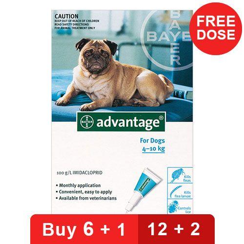 Advantage Medium Dogs 11-20lbs Aqua 4 Doses