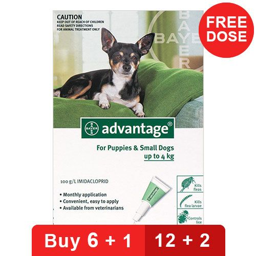 Advantage Small Dogs/ Pups 1-10lbs Green 4 Doses