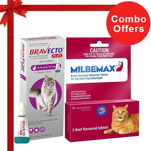 Bravecto Plus + Milbemax Cats Combo Pack  - For Large Cats (13