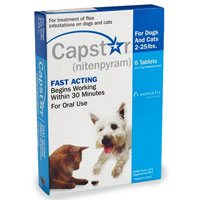 capstar-blue-for-cats-and-small-dogs-2-25-lbs