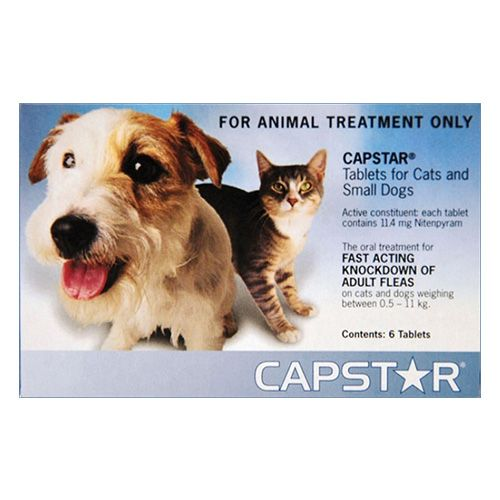 Capstar Cat & Small Dog 11mg 2-25 lbs Blue