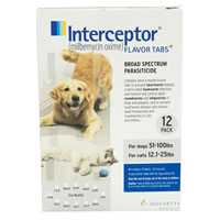 Interceptor For Large Dogs 51-100 lbs (Blue)