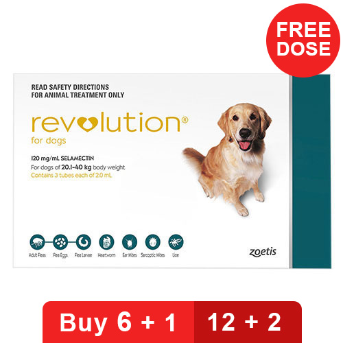 revolution-for-large-dogs-40-1-85lbs-green-of