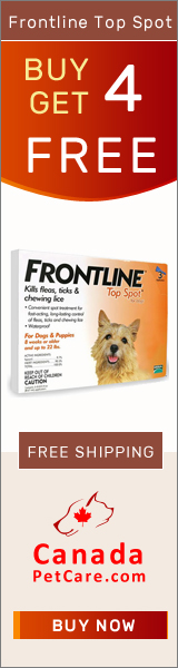 Frontline Top Spot for dogs is a topical treatment for fleas, ticks and chewing lice found in puppies and dogs. Shop Now to Get 4 Doses Free with 4 Months Pack of Frontline Top Spot for Dogs on CanadaPetCare.com + Free Shipping on all orders across USA.