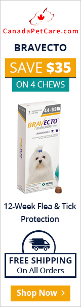 Bravecto is a pleasant chewable that works 12 full weeks to protect dogs from fleas and ticks just in a single dose. A more potent flea and tick treatment: Bravecto is a broad-spectrum treatment for parasites.