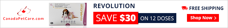 Revolution is an easy to apply topical treatment used on a monthly basis for a broad spectrum internal and external parasites. It is an effective heartworm preventive solution and kills fleas and ear mites in canines.