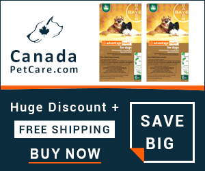 Advantage Multi (Advocate) is a monthly topical spot-on treatment to control fleas, heartworm, gastrointestinal worms, sarcoptic mange & ear mite infestation. Buy Now to Get Extra 10% Discount and Free Shipping on All Orders Across USA.