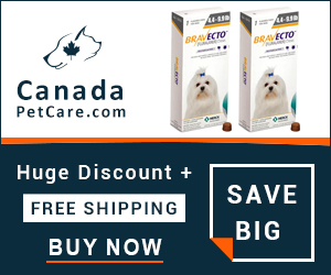 Bravecto is a more potent flea and tick treatment that works 12 full weeks to protect dogs just in a single dose. Buy Now to Get Extra 10% Discount and Free Shipping on All Orders Across USA.