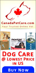 For everything you need for your dog, Canada Pet Care is a one-stop shop online for your dog supplies. Buy dog products at unbelievable great discounts with free shipping and fast delivery at Canada Pet Care.