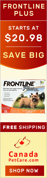 Buy Frontline Plus for Dogs Online at lowest Price with free shipping to all over USA. Frontline Plus is a fast-acting flea and tick preventative, killing all fleas on your dog in 12 hours and stopping infestations for a month.