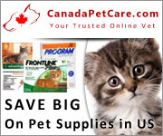 Buy from a huge collection of pet supplies at Canada Pet Care. A leading online pet supplies store offers flea and tick treatments, heartwormers, wormers and other pet products at best prices.
