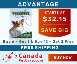 Advantage for dogs provides monthly protection against fleas. A fast acting treatment, Advantage kills 98-100% fleas within 12 hours of application. Buy branded Advantage for Dogs for Flea & Tick Control treatment with free shipping to all over USA.