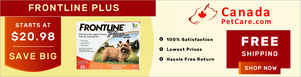A Merial product, Frontline Plus is a spot-on treatment for killing fleas and ticks in 8 weeks and older puppies and dogs. It kills 100% fleas within 12 hours and ticks and chewing lice within 48 hours of application. Buy Frontline Plus Online at Extra Di